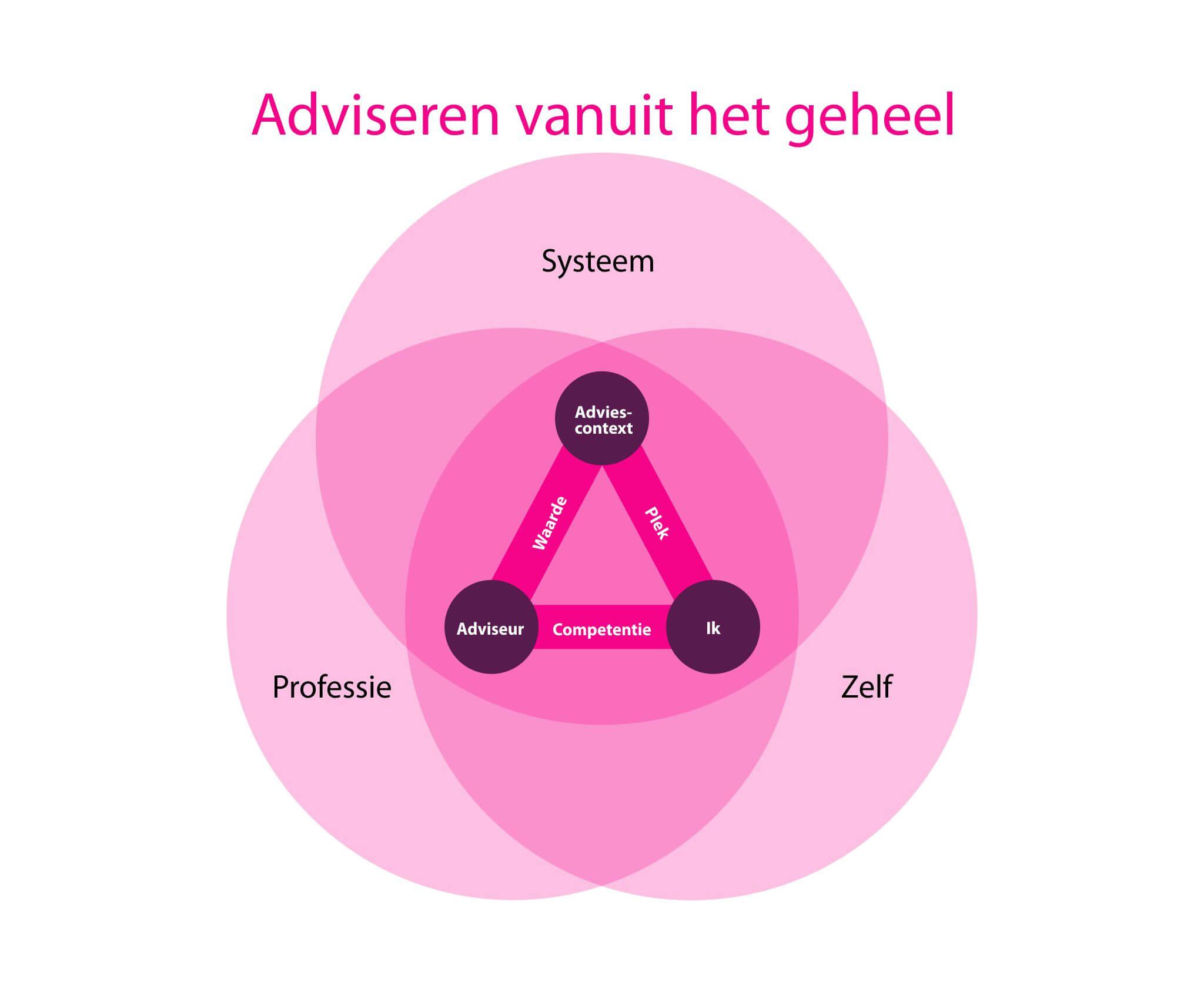 Ontwikkelmodel Meesterschap in Adviseren